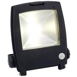 Ansell Mira 10W LED Floodlight with Motion Sensor PIR