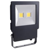 BELL Skyline 100W LED Floodlight