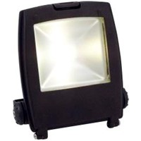 Ansell Mira 50W LED Floodlight