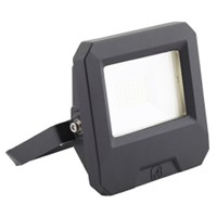 Ansell VASTE 30W LED Floodlight