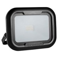Robus REMY 10W LED Floodlight Black
