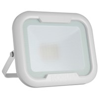 Robus REMY 30W LED Floodlight White
